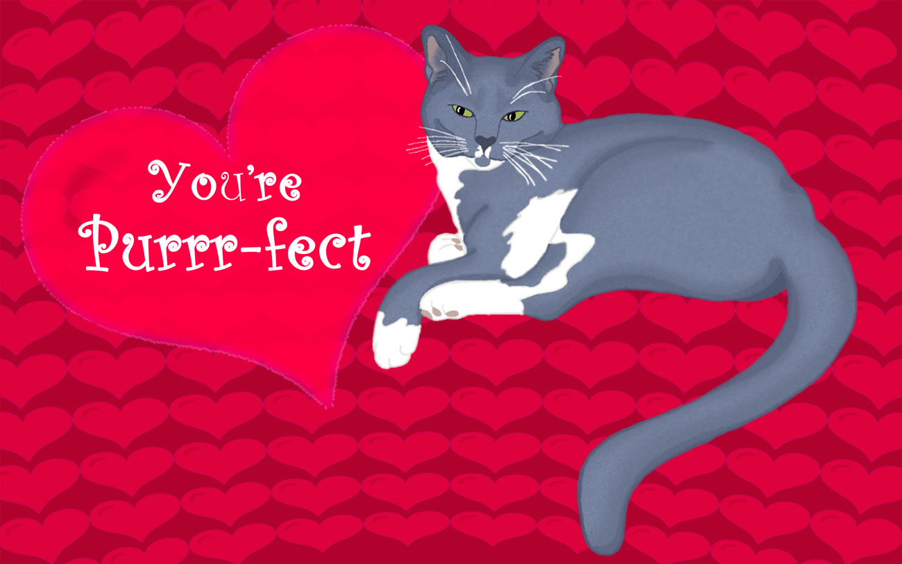 You're Purrfect (322)