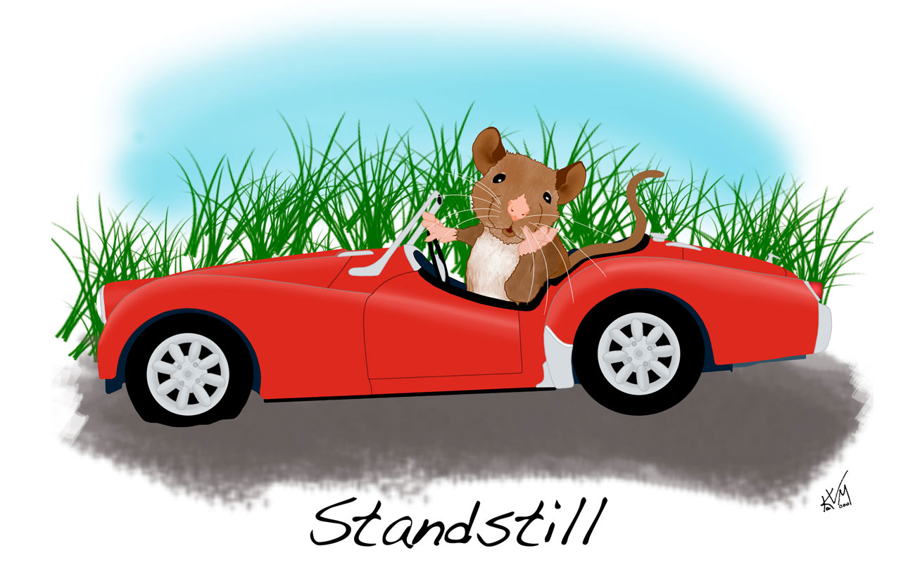 Stand Still (256)