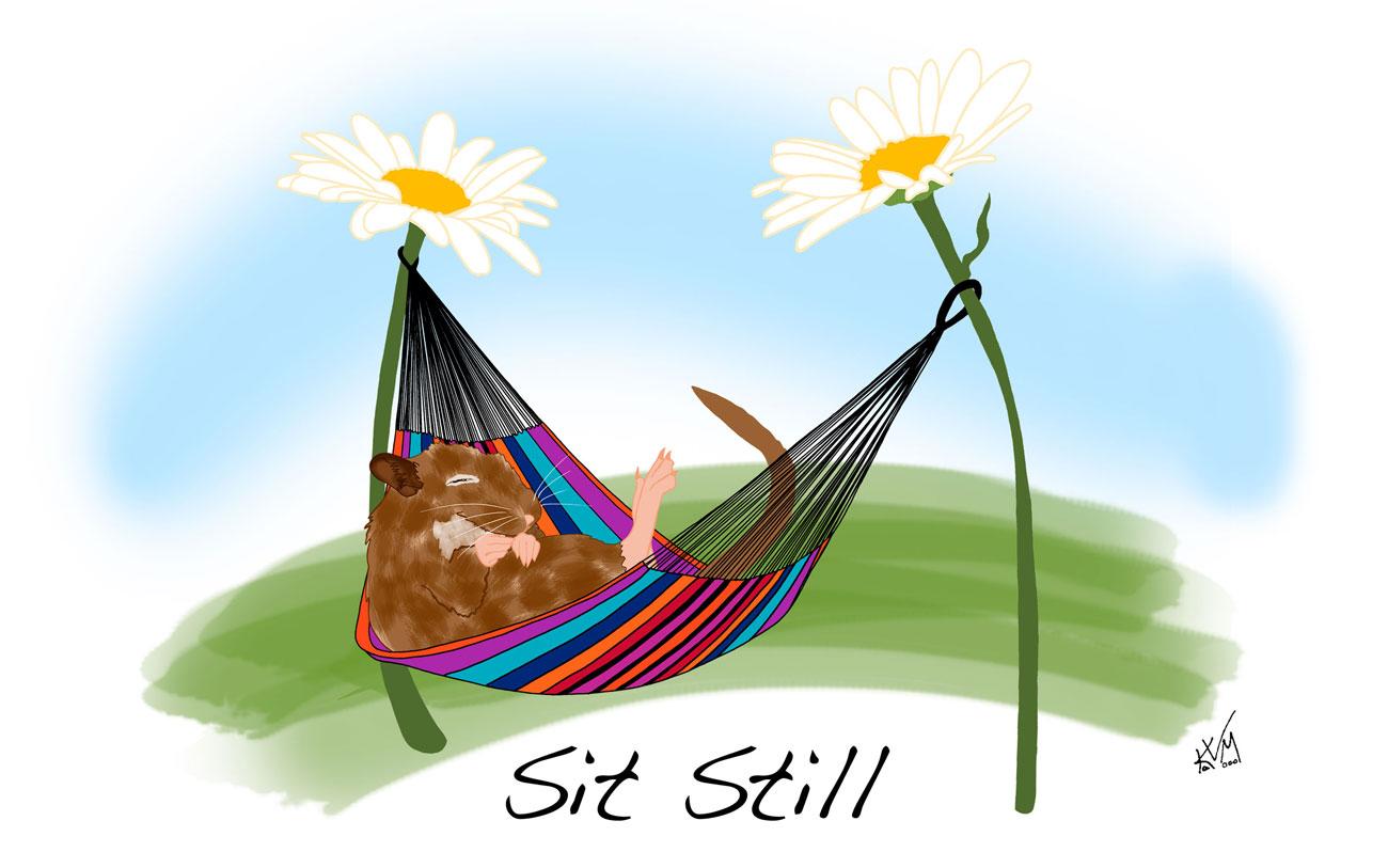 Sit Still (257)