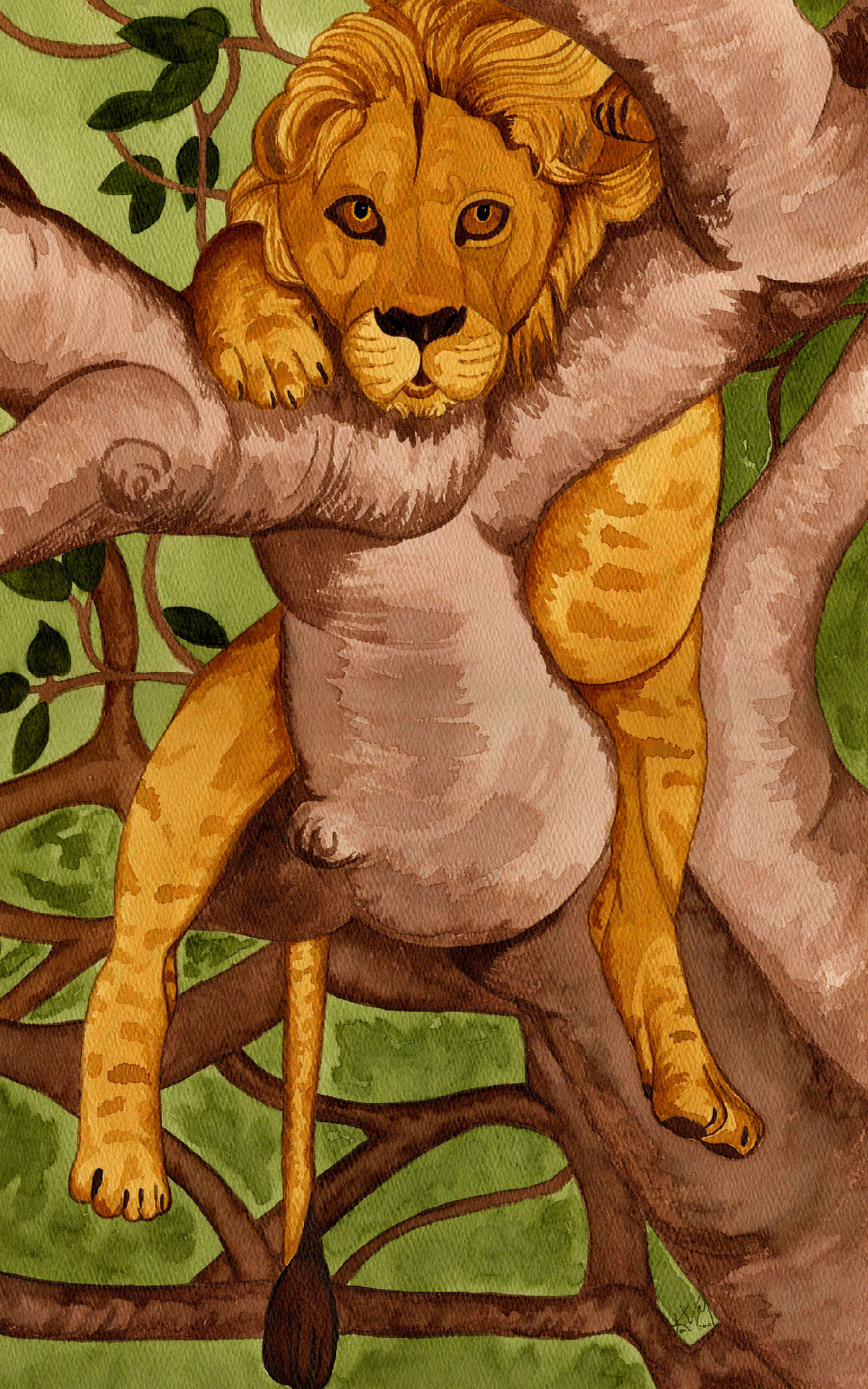 Lion in Fig Tree (031)